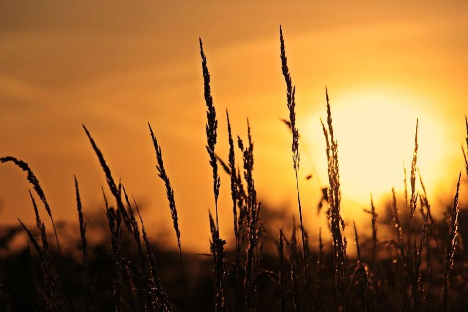 sunrise-3712483_960_720