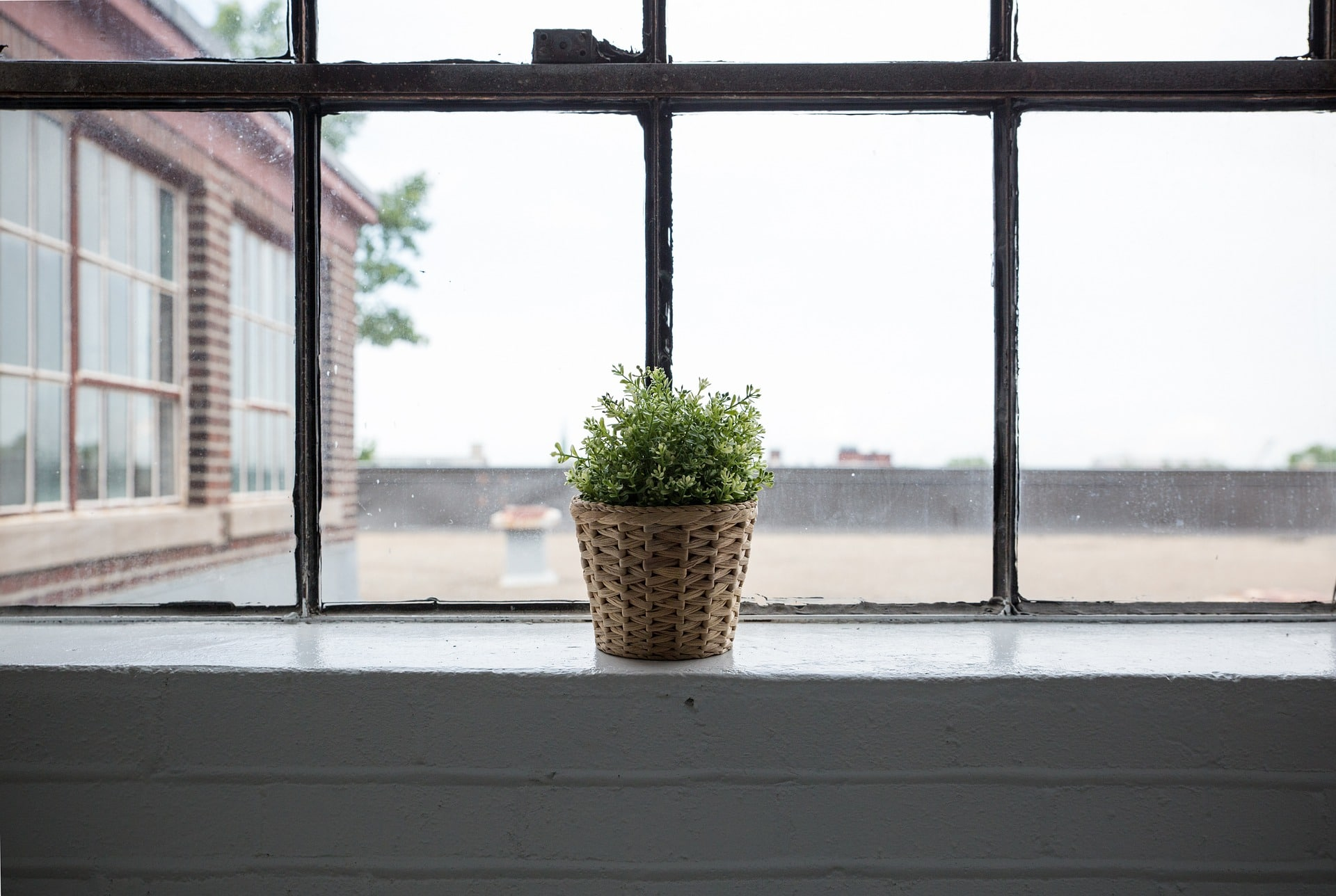 window-839824_1920